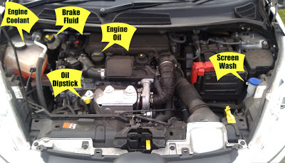 car oil and fluid levels image
